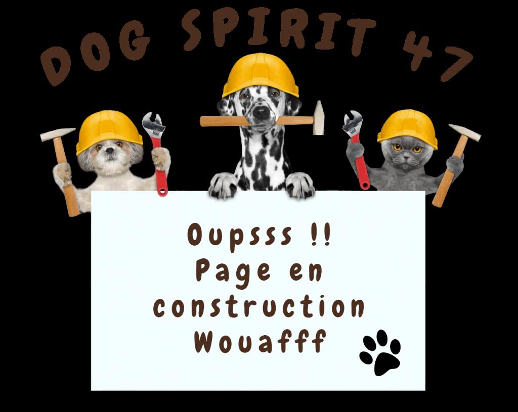 Page Web en construction